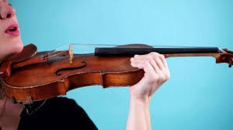 Aula de Violino Profissional Parque Anhembi - Aula de Violino para Iniciantes Passo a Passo